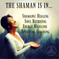 Shamanic Coaching (Debra)