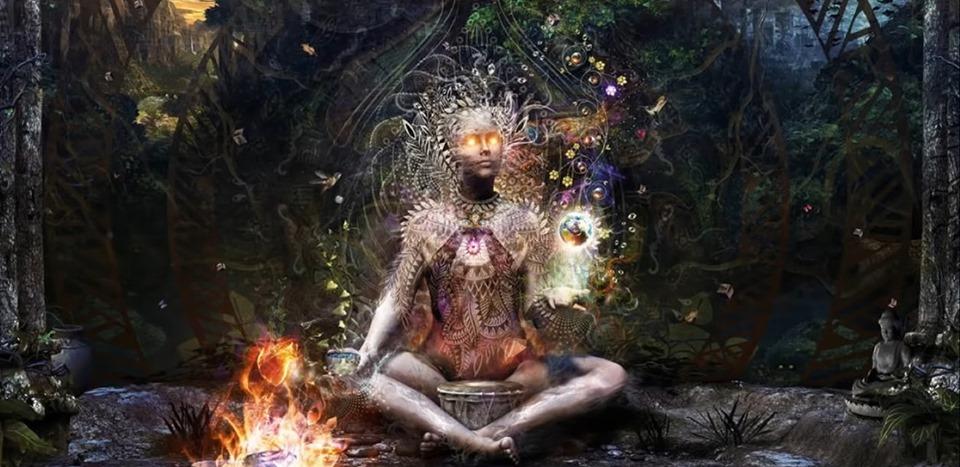 plant medicine, plant medicine ceremony, psychedelic mushrooms, magic mushrooms, psilocybin mushrooms, shamanic healing, shamanic weekend retreat,